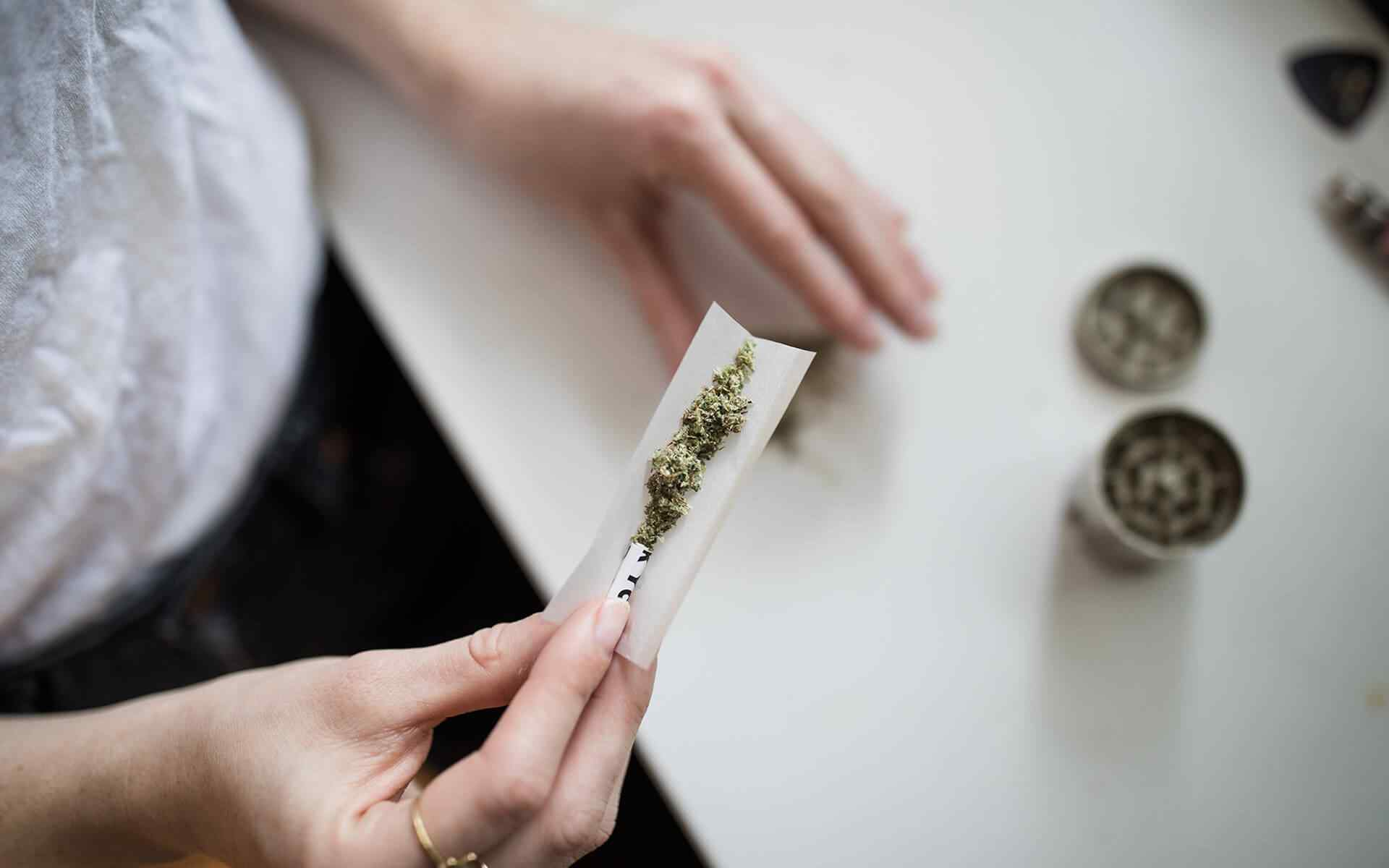 Options For a Cannabis Education in All Countries