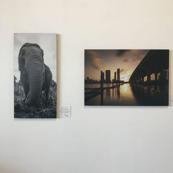 Art Exhibit Delray Beach