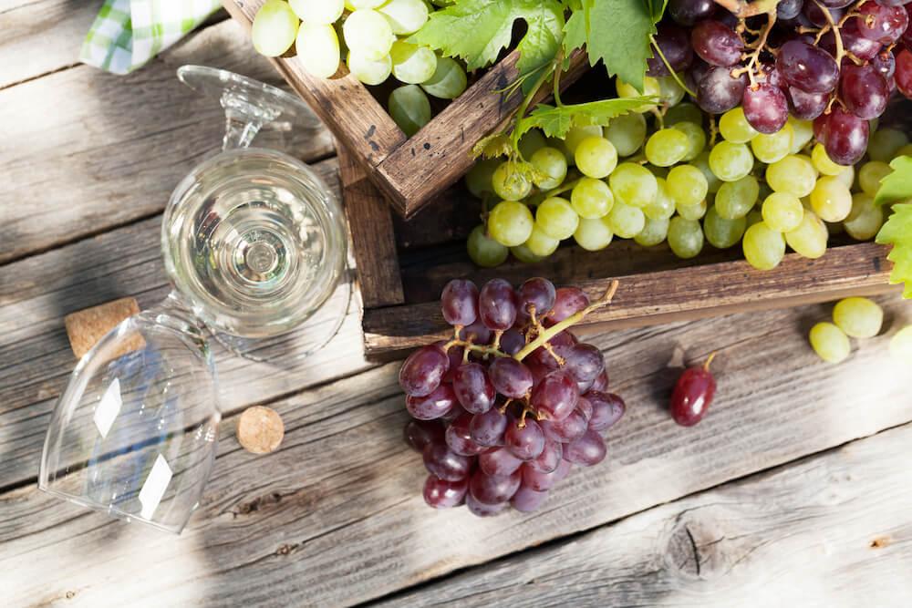 Take a Wine Region RV Tour