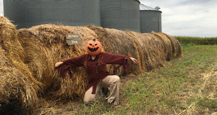 halloween-town-scarecrow-costume-diy-feature