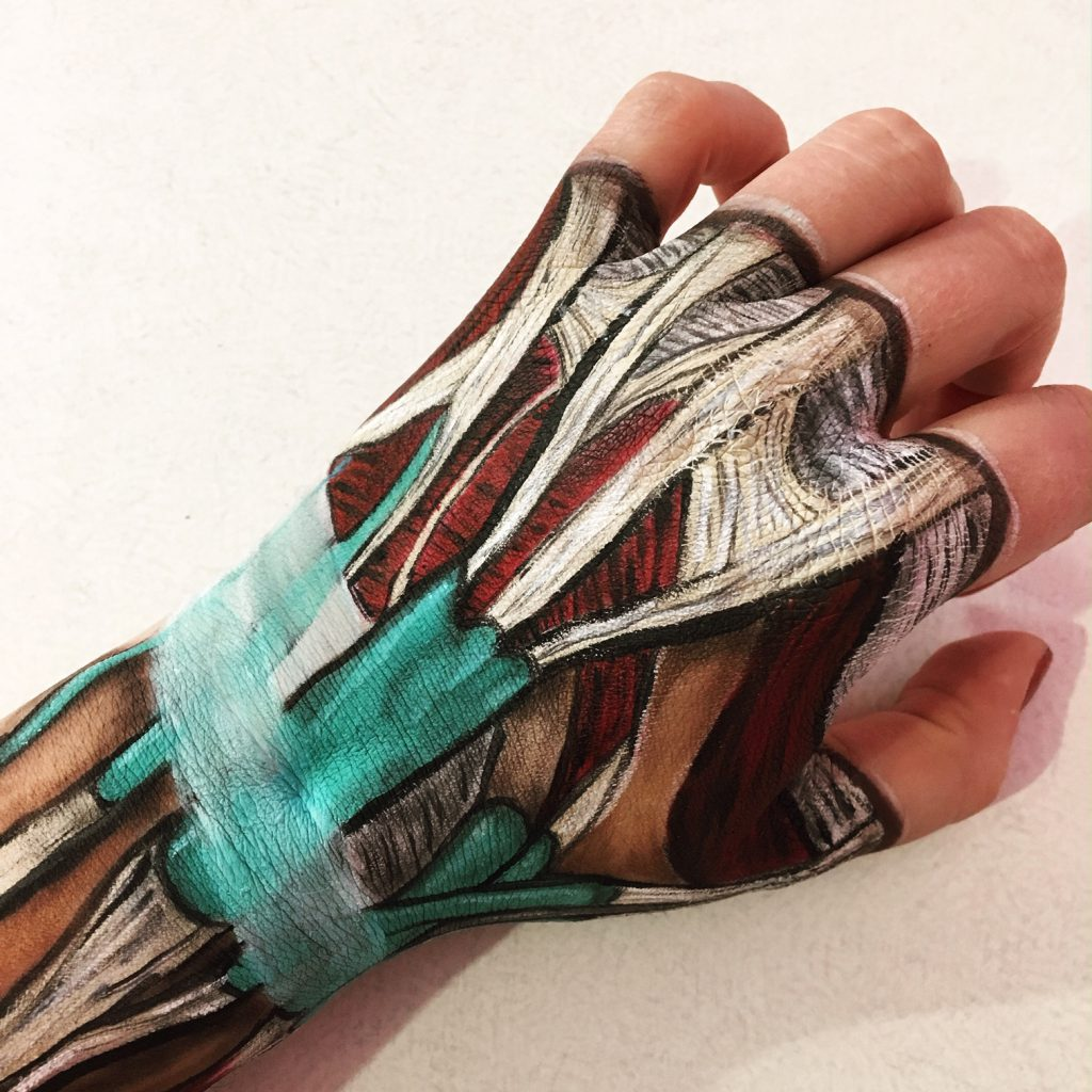 hand anatomy makeup