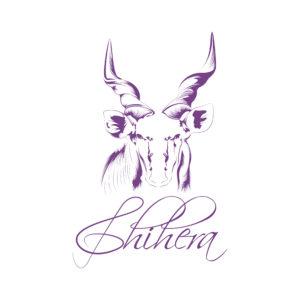 Chihera Purple Transparent