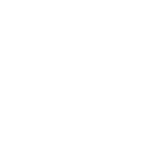 Article Fifteen Brewing Co