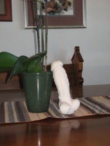 The Horse Cock