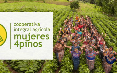 PPC Flexible Packaging Proudly Supports Cooperativa Integral Agrícola Mujeres 4pinos