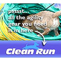 CleanRun Donate Badge