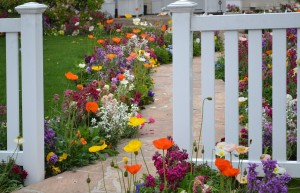 Helpful Ideas on How to Increase Your Home's Curb Appeal