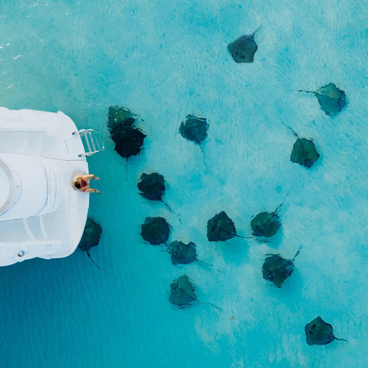 Cayman Islands Tourism Association - Global Citizen Concierge Program - Stingray City - Seascape Villa