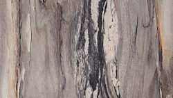 3420 Dolce Vita 180FX - Discontinued - Formica