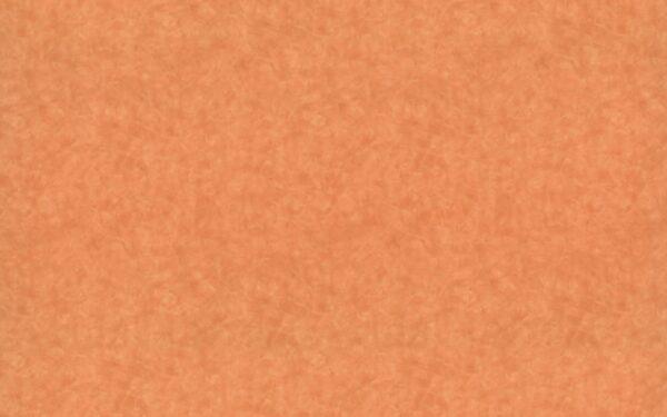 4744 Karratha Brush - Wilsonart