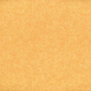 4745 Maroochy Brush - Wilsonart