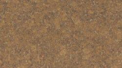 4866 Jeweled Coral - Wilsonart