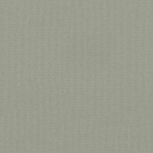 4993 Irish Linen - Wilsonart