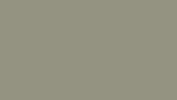 5343 Possum - Formica