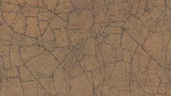 7704 Burnished Glaze - Formica