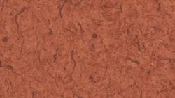 AO101 Chili Fiber - Pionite