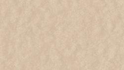 AT251 Beige Crepe - Pionite