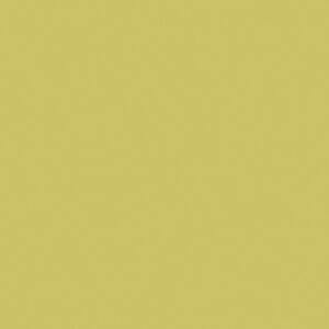 S5057 Kool Kiwi - Nevamar