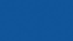 SB040 Blueberry Hill - Pionite
