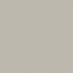 SG224 Stonedust - Pionite