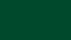 SV704 Boxwood - Pionite