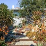 5 Drought-Resistant Gardens