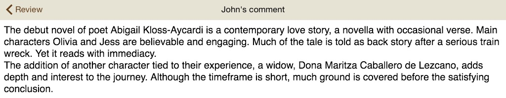 John's review Madrid Metro