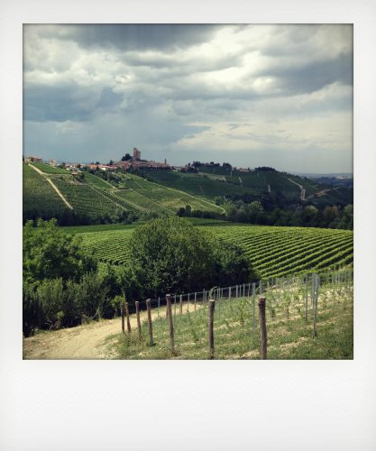 Vacanza breve in agriturismo nelle Langhe