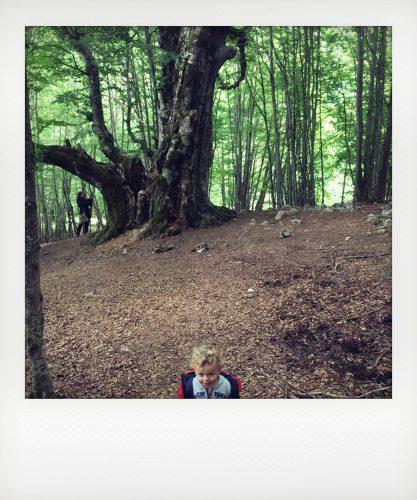 Bambini nel parco nazionale d'Abruzzo
