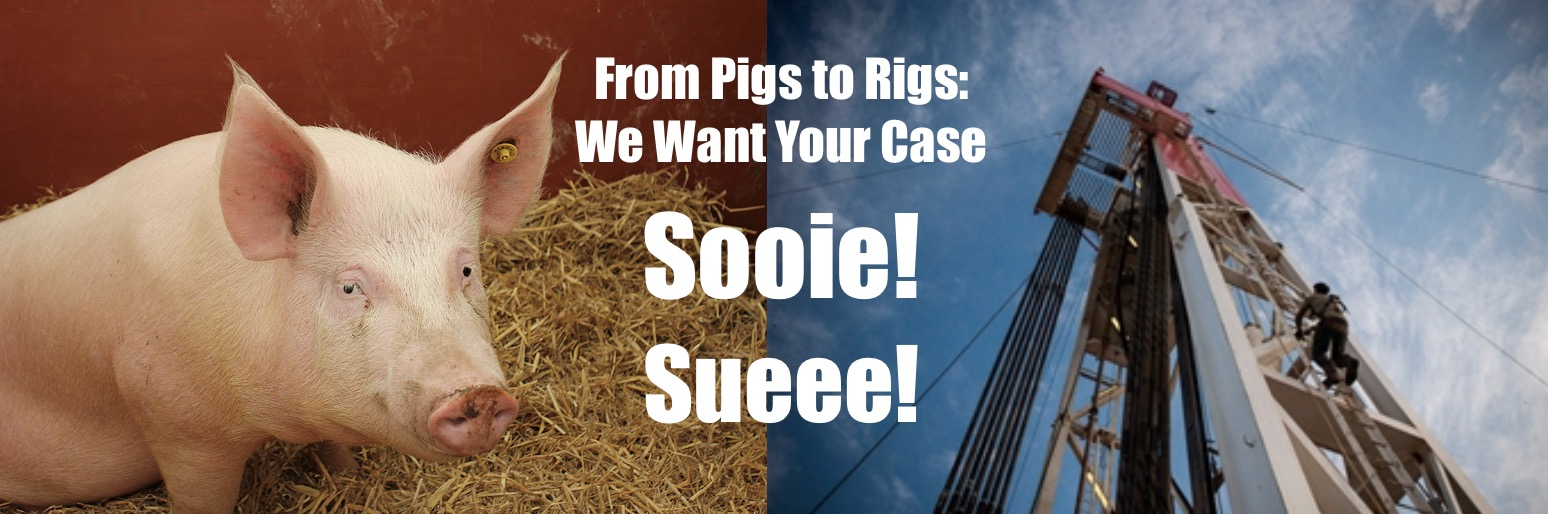 Pigs to Rigs