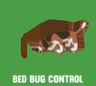 Cimexk9bedbugcontrol