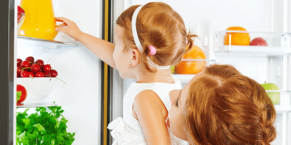 refrigerator repair green cove springs