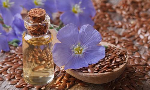 Flax seeds wholesaler USA