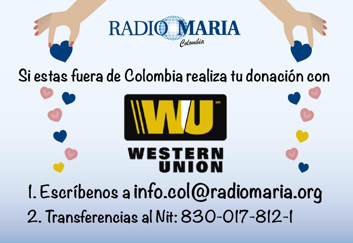 7. Donaciones western union