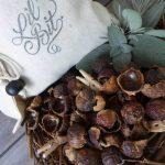 eco conscious soap nuts