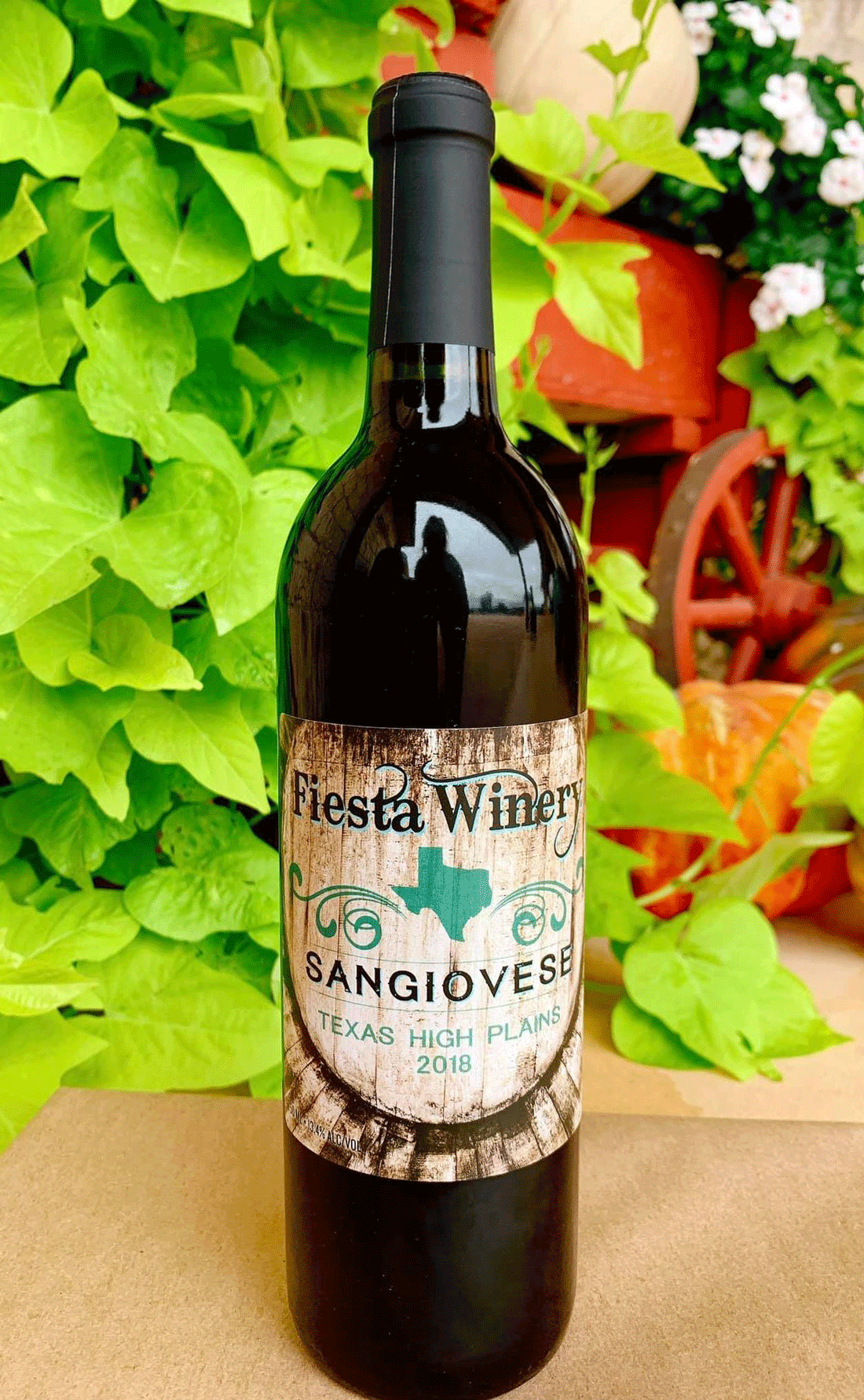 Bottle of wine in front of green vines