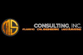 MSA Consulting Logo sm