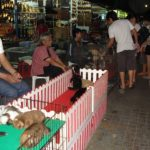 And yes... pets also being sold here at the weekend market!
