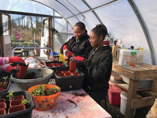 USDA: Healthy Food Funding Initiative1