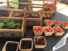 USDA: Healthy Food Funding Initiative2