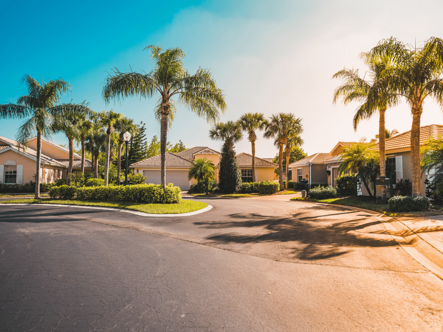 Florida Homes with Palm Trees Estate Sales