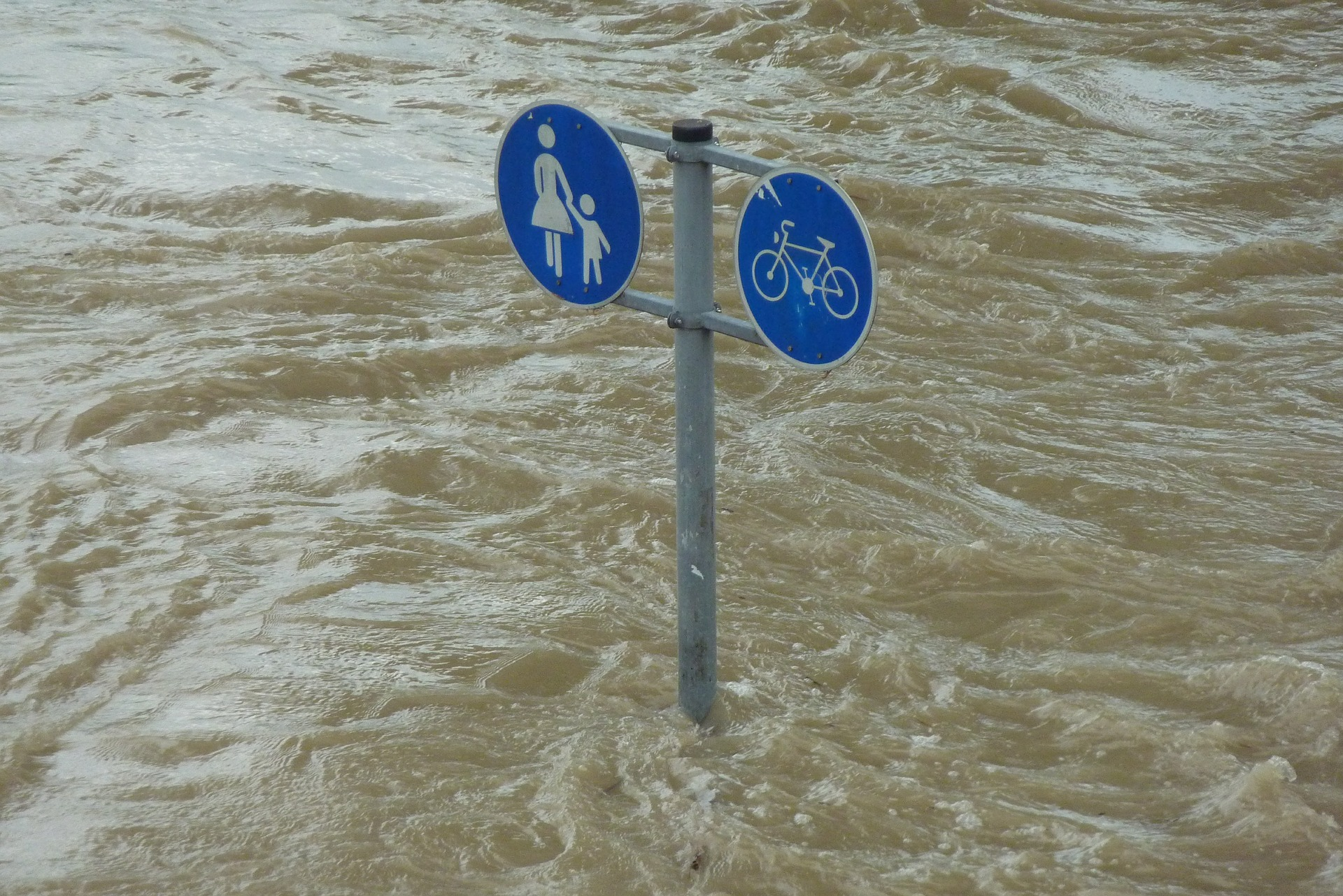 Of Floods and Blood Tests: That Maddening Insurance Policy
