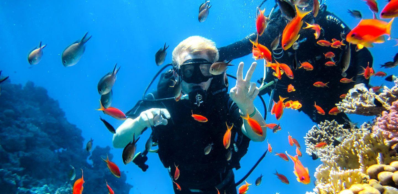 Scuba diving Sharm El Sheikh