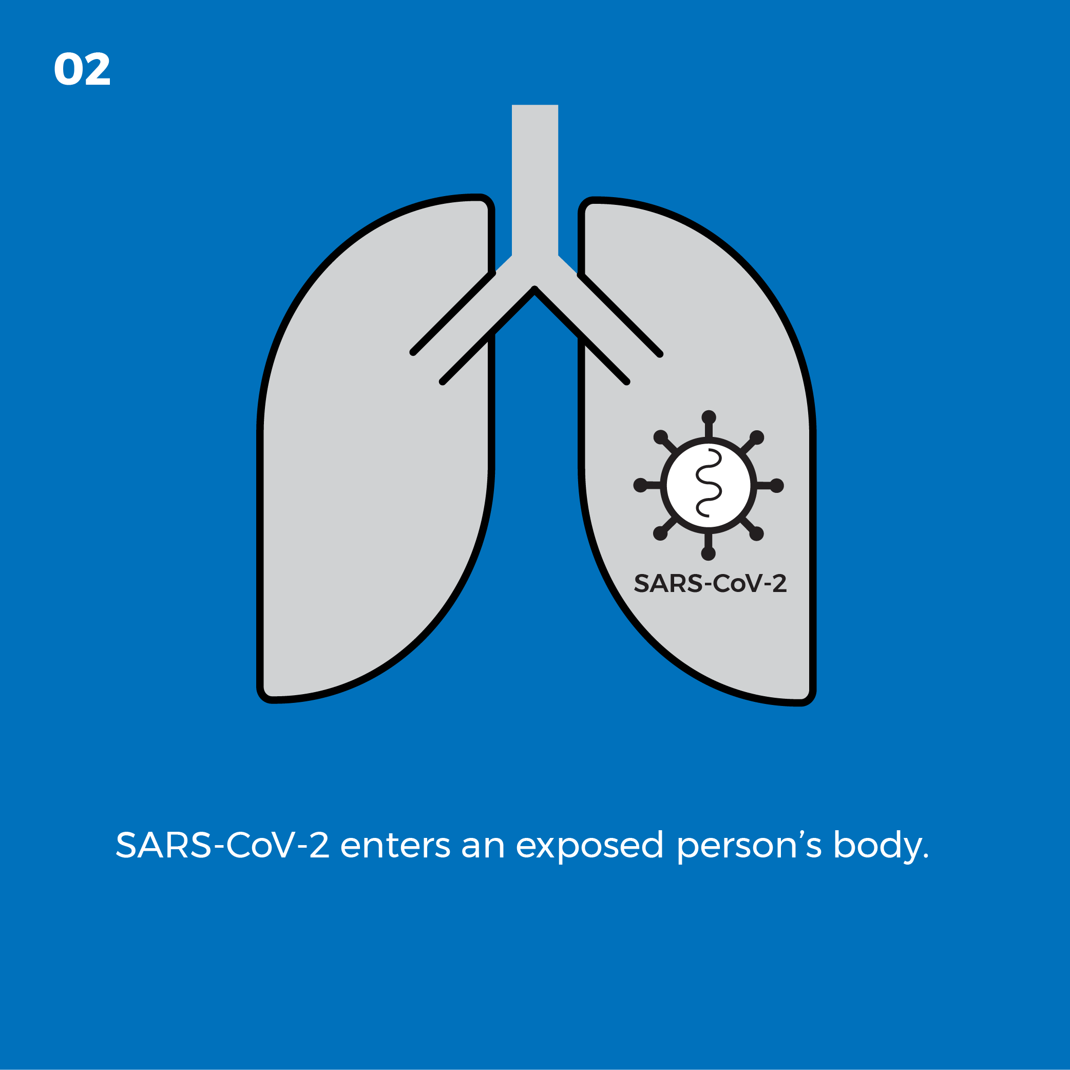 SARS-CoV-2 enters an exposed person's body.