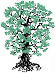 Religion_Tree.jpg
