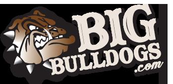 Logo BigBulldogs