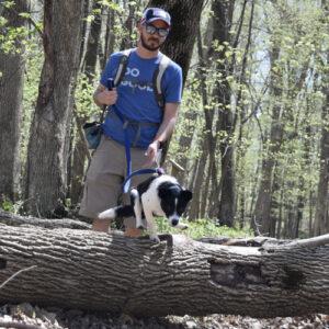 Wade and his dog climb over a downed liimb.