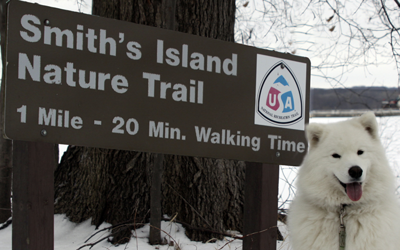 Wade on the Trail with his dog