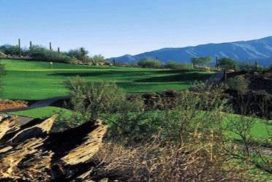 Rancho Manana Golf in Cave Creek