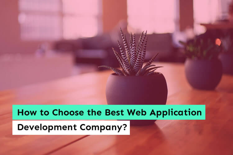 How to Choose the Best Web Application Development Company